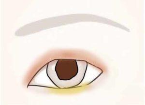 カラーアイシャドウ 塗り方 パターン