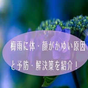 梅雨に体・顔がかゆい原因と予防・解決策を紹介!